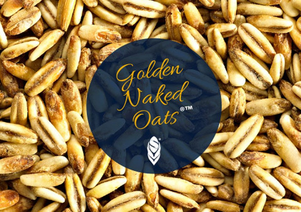 Simpsons Golden Naked Oats 3kg Whole